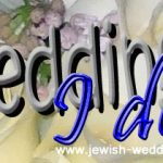 Rabbi Services from Rabbi Andrea Frank – Contact Form
