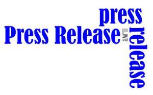 Press Release for The Jewish Wedding Rabbi