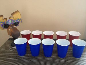 Purim Carnival Ideas - The-Flip-Cup-Drink-Drunk-Purim-Game